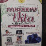 """Antonello torna sul palco al """"Concerto per la Vita"""""""